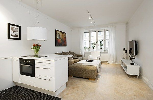 Beautiful & Efficient Design in a One Room Apartment