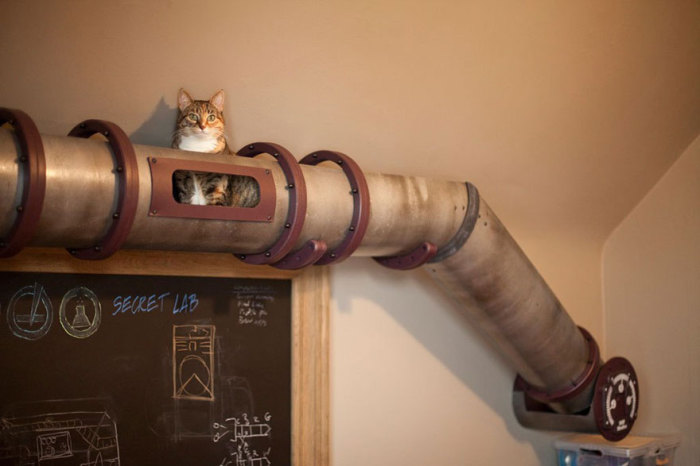 Cat's tunnel in the form of an old tin pipe from Because We Can.