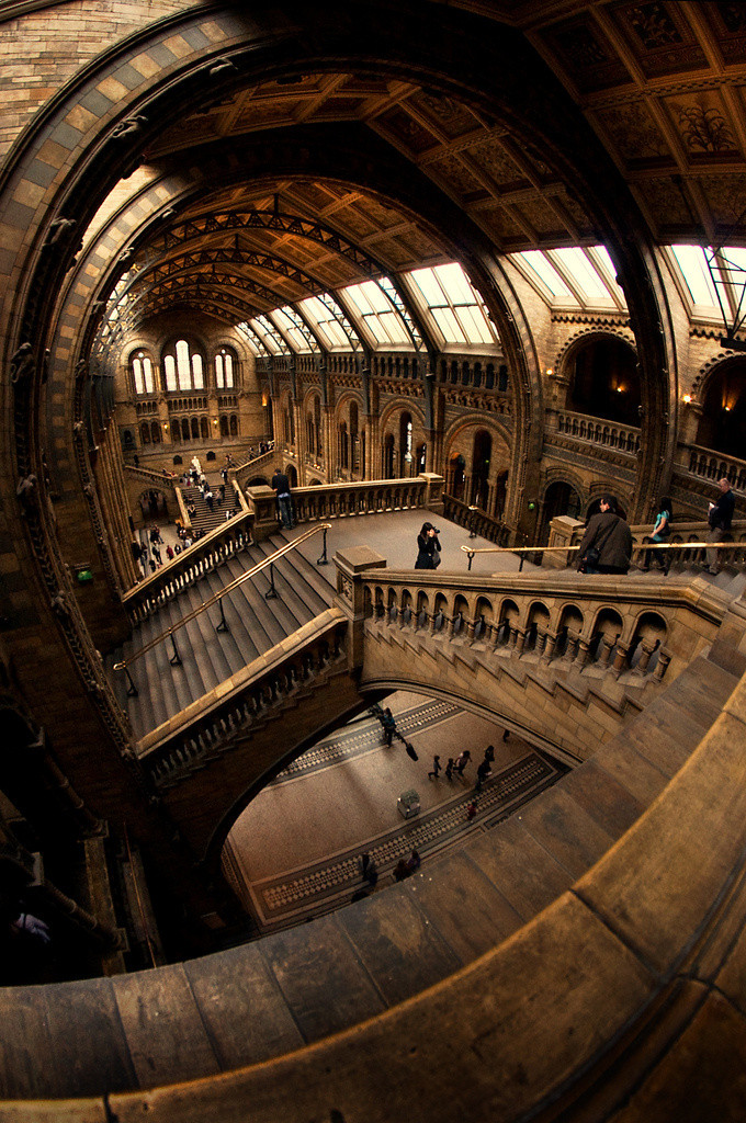 Great Hall Of The Natural History Museum In London