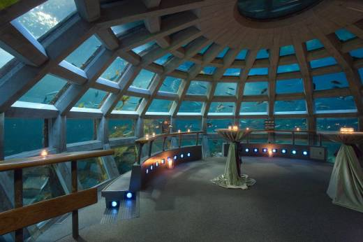 Underwater Sea Aquarium in Seattle
