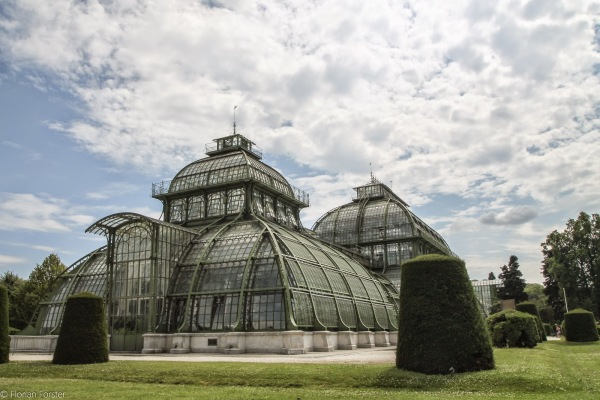 the palm house in vienna consists out of 45 000 glass tiles