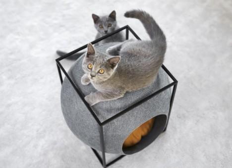 cat-houses 11