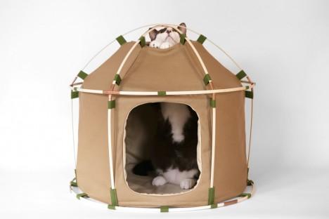 cat-houses 14