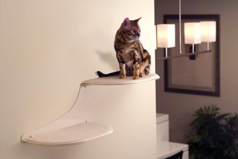 cat-houses 25