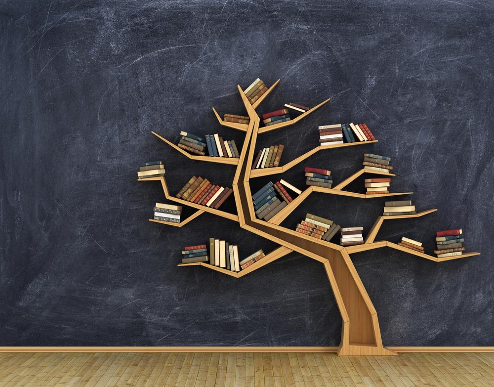 Our Clutter Free Interior Designer Approved Bookshelf Ideas