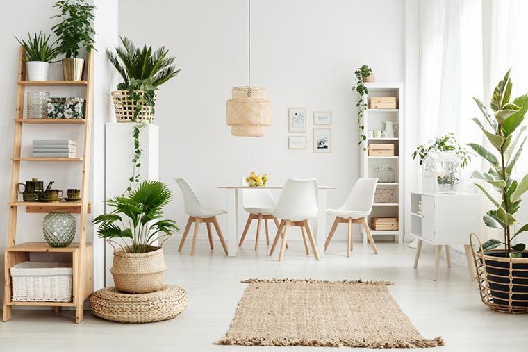Plants-to-decorate-the-home-interior-interiordesignsmagazine.com