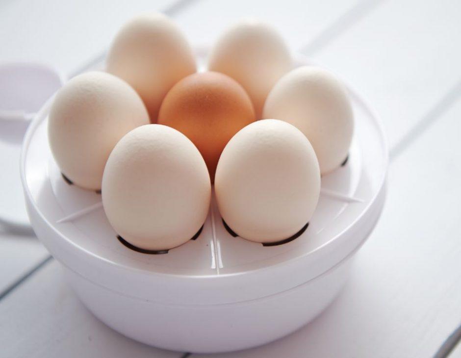 Egg-Boiler-Interiordesignsmagazine.com