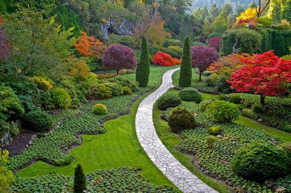 50 Super Cool Garden Design ideas for Healthy Outdoor Area