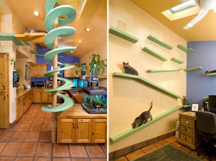Cat slides from Trillium Enterprises.