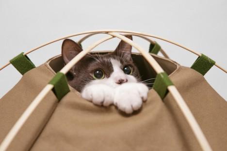 cat-houses 15