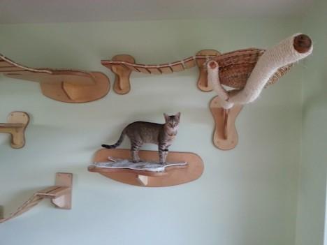 cat-houses 4