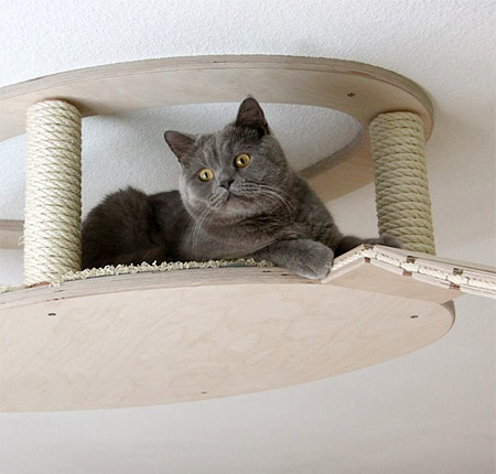 cat-houses 5
