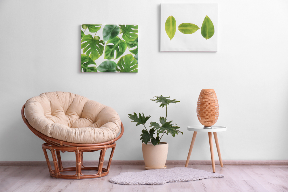 Papasan Chairs fresh ways to give a refreshing look to your sitting area