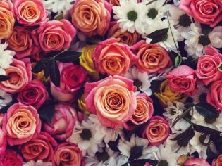 Best Flowers To Express Your Love and Gift To Your Loved Ones