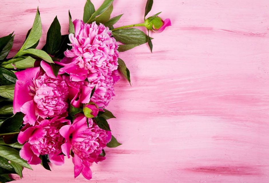 Best-Flowers-Interiordesignsmagazine.com